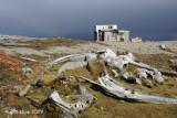 Whale Bones & Trappers Hut, Gashamna Svalbard