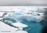 Ice,  Svalbard Norway  1