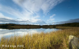 Reflection Pond, Mt Denali Alaska 1