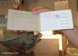 Cuban Ration Book