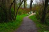 Vedder Trail