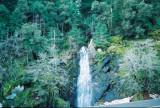 Waterfall near the road