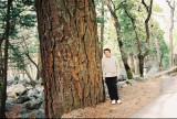 Me near pine
