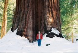 Me and Sequoya trunk in California