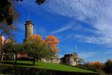 The Castle Altenburg