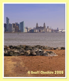Liverpool Waterfront from Egremont prom