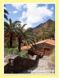 Tenerife 2009