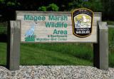 Magee Marsh Wildlife Area, Ohio,2009