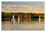 Sailing the Sunset