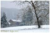Snowy Morning at Thompson Neely Farm