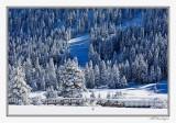 Footbridge In Snow