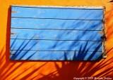 """Yucca Shadows"""