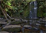 The Otways - Waterfalls
