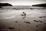 ¿Qué ocurre cuando se escapa el mar?