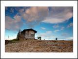 Little house-02
