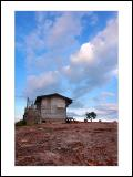 Little house-03