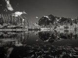 Mt. Shuksan & Picture Lake
