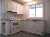 kitchen-- view 1