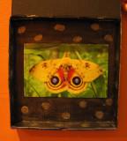 pizza-box-owl-2.jpg