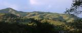 Velvet Mountains