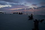 Hunting Island Beach