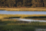 Low Country Scenery