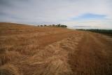 Raked Field