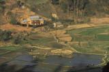 Rice fields at Fianarantsoa