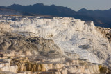 Mammoth Hot Springs, Canary Spring