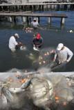 Livingston, fishermen