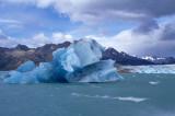 Iceberg at Viedma Lake