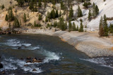 Roosevelt Country, Yellowstone River at the base of Tower Fall