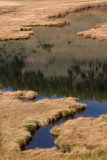 Mammoth Country, Blacktail Ponds