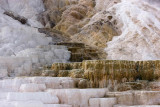 Mammoth Hot Springs,Palette Springs