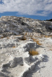 Mammoth Hot Springs, Jupiter Terrace
