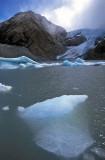 Piedras Blancas Glacier
