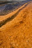 Midway Geyser Basin, Grand Prismatic Spring
