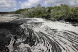 Lava and sand, Punta Espinosa, Fernandina Island