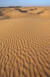Desert near Douz