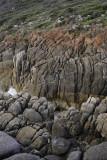 Whisky Beach, Wilsons Promontory N P