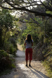 On the way to the beach, Wilsons Promontory N P