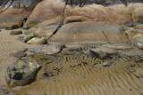Sealers Cove, Wilsons Promontory N P