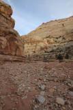 Grand Wash Trail