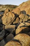 Near the beach at Cape Conran