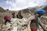 Phongdo, rebuilding the houses