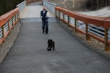 SARA AND CHARLIE LOVED TO TAKE WALKS ON THE BRIDGE OVER THE RIVER AT DENALI VILLAGE
