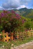 Rozhkao Gardens