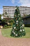 Christmas Tree - Whaler's Village - Kaanapali