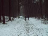 04_winterseriewaalwijk82.jpg