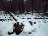 07_winterseriewaalwijk82.jpg